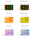 A comparison of heatmaps made using some common color schemes: red, black and green (top left), default heatmap colors in R yellow to red (middle left)  and red & blue (bottom left), along with their corresponding simulation for red/green deficit on the right.